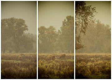 lauwersmeer triptychon 26 von anne droogsma