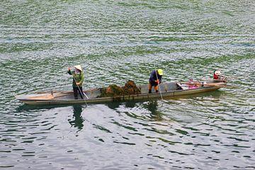 Kano Vietnam