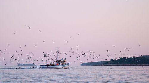 Vögel über Wasser am Morgen von Laura Vink