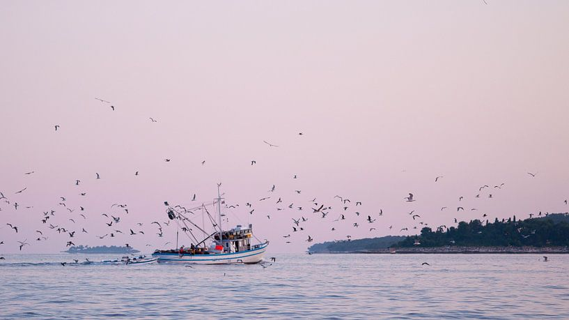 Early morning birds van Laura Vink