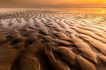 Structures de plage Texel