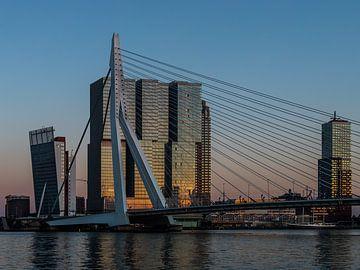 Skyline Rotterdam von Wethorse Heleen