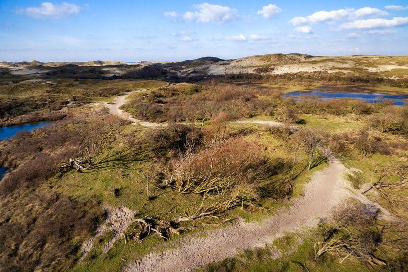 Wandelpad in de duinen van Egmond van Fotografie Egmond