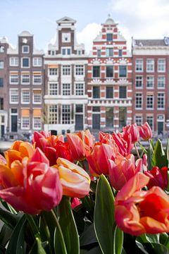 Tulpen voor grachtenpanden in amsterdam van Romy Oomen