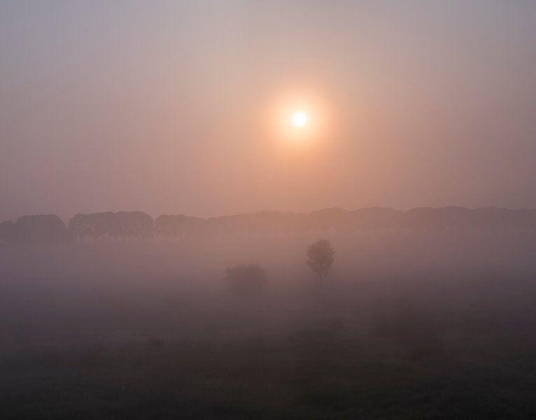 Rulstraat tussen Megen en Haren in de mist van Wouter Bos