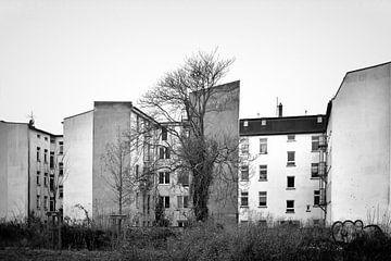 Hinterhöfe in Magdeburg-Buckau von Heiko Kueverling