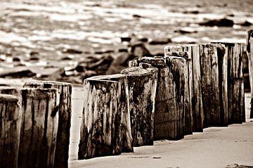 Strandpalen van Jessica Berendsen