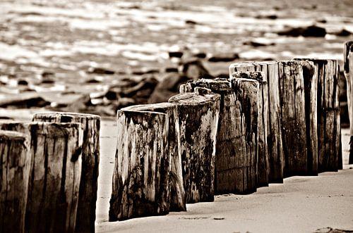 Strandpalen van