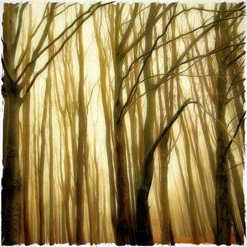 the mystic forest II van Bernd Hoyen