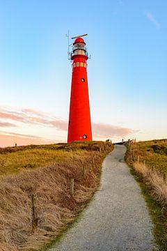 Pfad zum Leuchtturm in den Dünen auf der Insel Schiermonnikoog von Sjoerd van der Wal