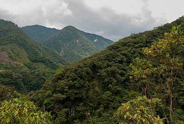 Ecuador: Pailón Diablo (Baños) van Maarten Verhees