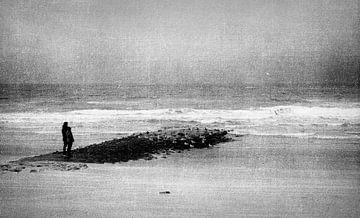 Marcheurs sur la côte de la mer du Nord sur