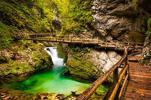 Vintgar Gorge kloof met houten vlonder in Slovenië