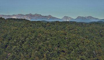 Landschaft in der Wildnis - Berggipfel und Wald - Neuseeland - Gemälde von Schildersatelier van der Ven