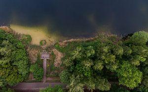 Een meer en bomen van boven