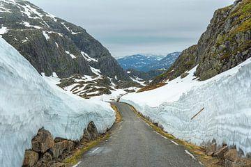 Sognefjellet Norway van Marc Hollenberg