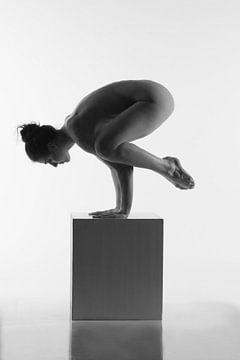 Künstlerische nackte Yogahaltung auf einem Kasten von Arjan Groot