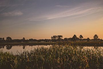 Zonsopgang in Natuurreservaat Bourgoyen - Ossemeersen, Gent, België van Daan Duvillier