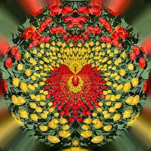 Love tulips 1