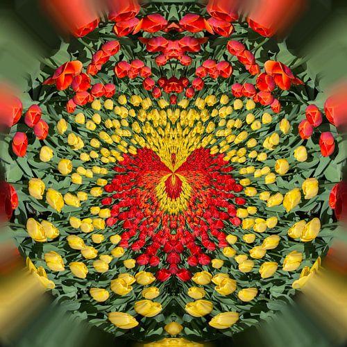 Love tulips 1 von Kok and Kok