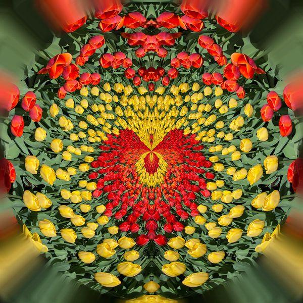 Love tulips 1 van Kok and Kok