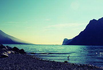 Italia2 van Iris van Bokhorst