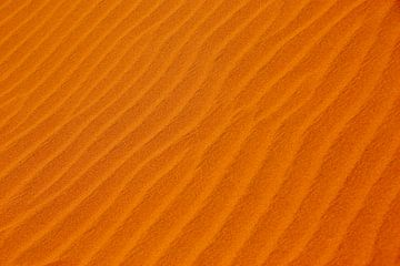 NAMIBIA ... sand waves van