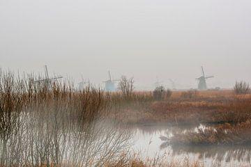 Kinderdijk met de windmolens in de mist. van Brian Morgan