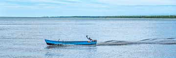 Bootsman op Surinamerivier van Michel Groen