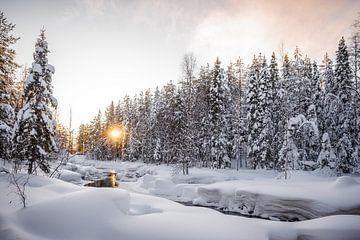 Lappland von Anita Kabbedijk