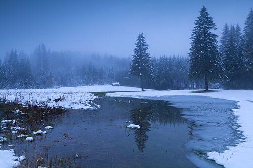 Winter dusk von Olha Rohulya