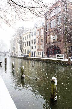 Winter in Utrecht. Besneeuwde dukdalven in de Oudegracht. van De Utrechtse Grachten
