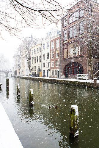 Winter in Utrecht. Besneeuwde dukdalven in de Oudegracht. van