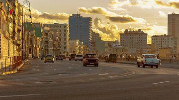 Havana sur René Roos