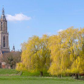 Rhenen, stad en gemeente in de Nederlandse provincie Utrecht van Eric Wander