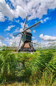 Wipwater Mühle 'Bonrepas' auf der Vlist in der Nähe von Gouda von Gouda op zijn mooist