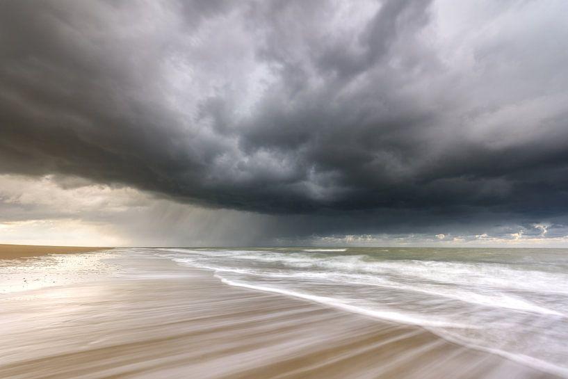 Searching for shelter van Ellen van den Doel