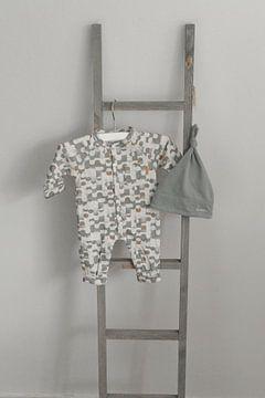 Babykamer van Michelle Van Den Berg