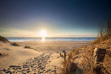 pad naar Noordzeestrand in zomerzon, Nederland van Olha Rohulya
