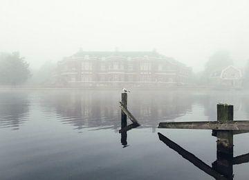 Haarlem: Meeuw in de mist. sur Olaf Kramer