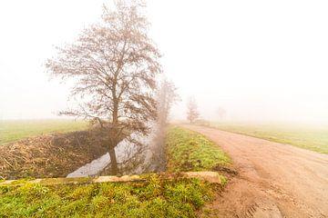 Mistige morgen met een weg en een rivier van Marcel Derweduwen