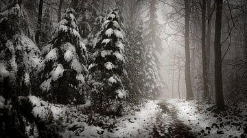 Winterlandschap van Maurice Cobben