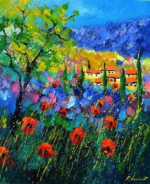 Provence 562021