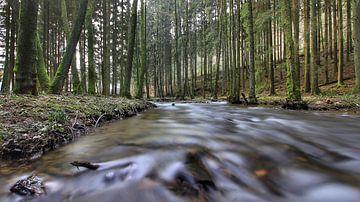 river von Maurice Hoogeboom