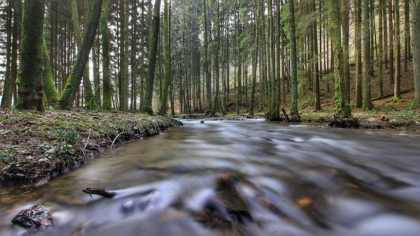 river van Maurice Hoogeboom