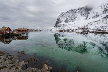 Fjord auf den Lofoten(Norwegen) im Winter von Maik Richter