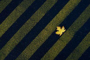 Herfst in aanbouw van Wijnand Kroes