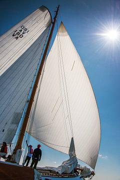 Set Sail sur Harrie Muis