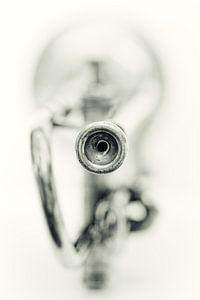 Sentimental Mood.... (muziek, muziekinstrument, trompet)