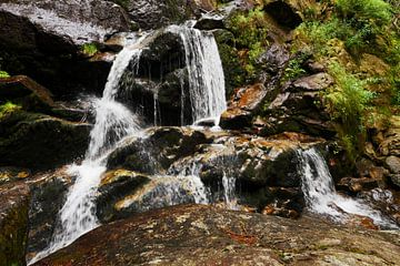Riesloch watervallen bij Bodenmais, Beieren 11 van Jörg Hausmann